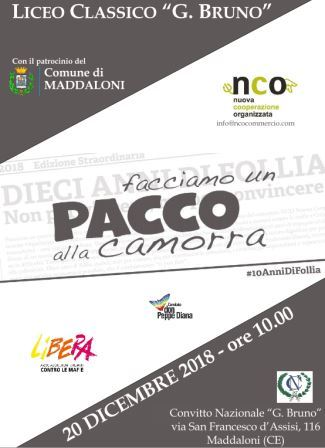 paccocamorra